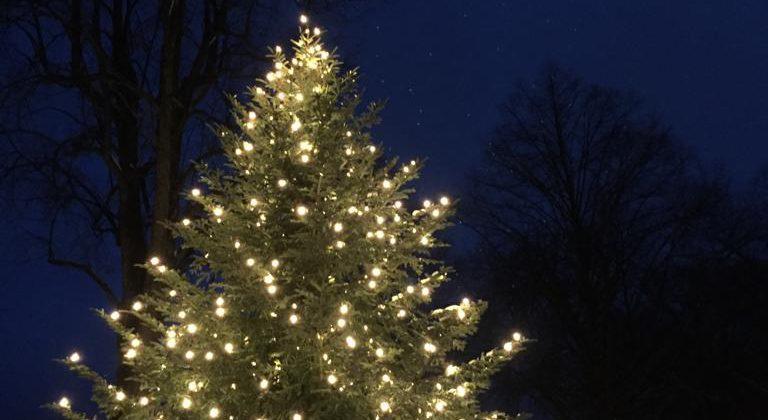 Ganz besondere Weihnachtsgeschichte